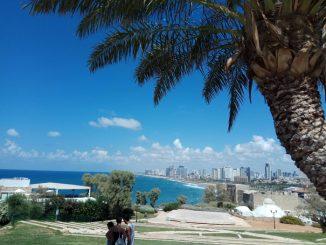 Винодельня. Тель- Авив. Яффо. Мини Израиль.
